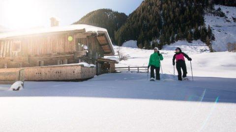 winter schneeschuh zillertal