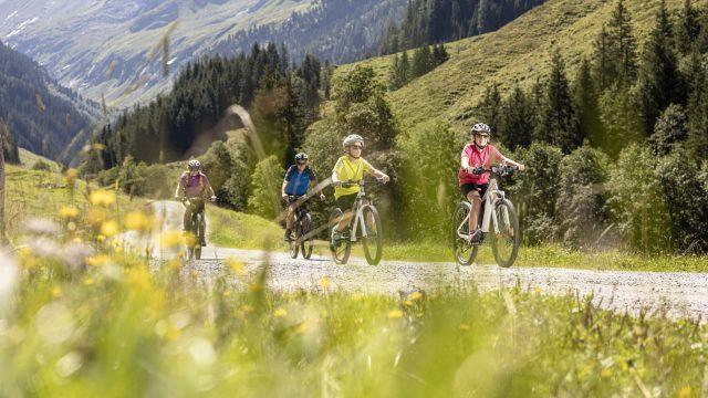 zillertal arena sommer familien mountainbiken